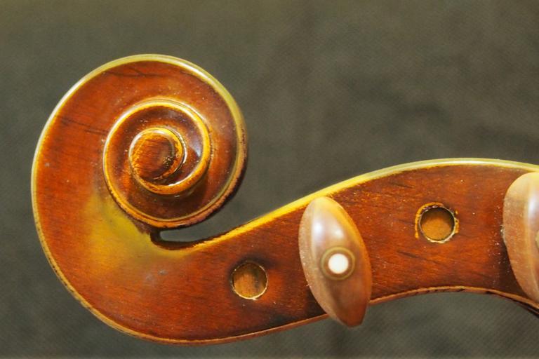 The head of a violin